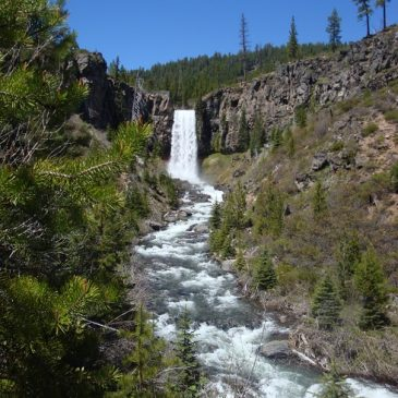 Tumalo Falls / Old Mill – June 12, 2010