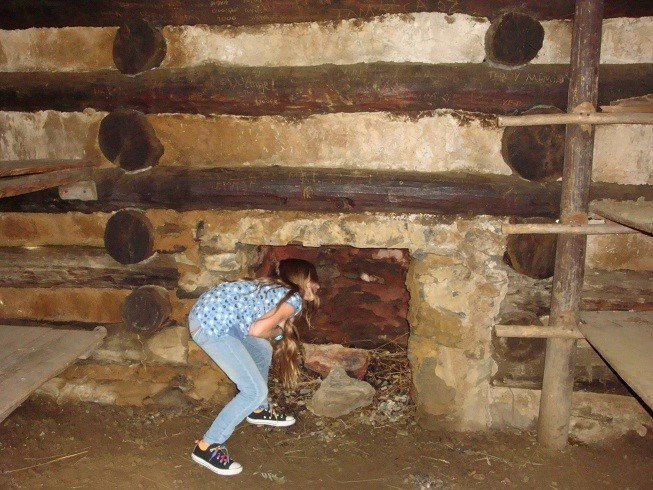Sarah is inspecting the chimney to make sure it is safe.