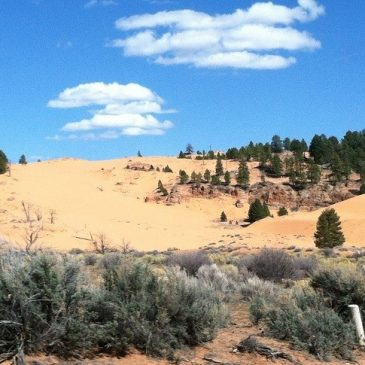 Coral Dunes State Park, Bryce Canyon National Park