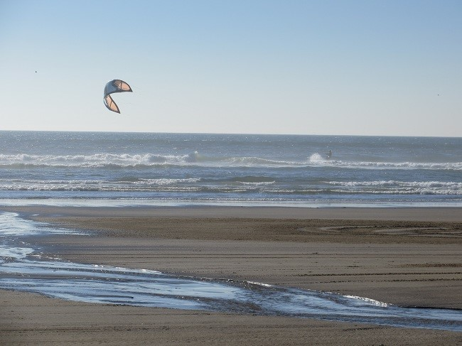This guy is wind surfing. That looks like work, especially if his kite were to get gnarled in a wave.