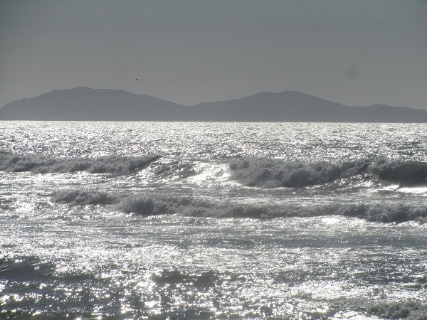 Our camera took a picture of the ocean in gray-scale, we did not want too many of  our friends at home to feel sad-looking at all the blue skies. This picture makes it look nice and Stormy like Seaside would be this time of year.