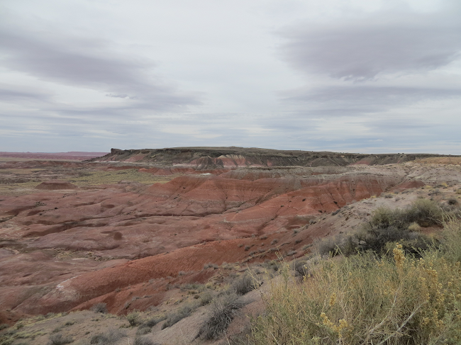 We arrive at the painted desert which is part of the Petrified Forest National Park. If you have a choice come here on a sunny day the colors will be worth the effort.  We were not so lucky, we had cloud cover that kept it subdued all day.