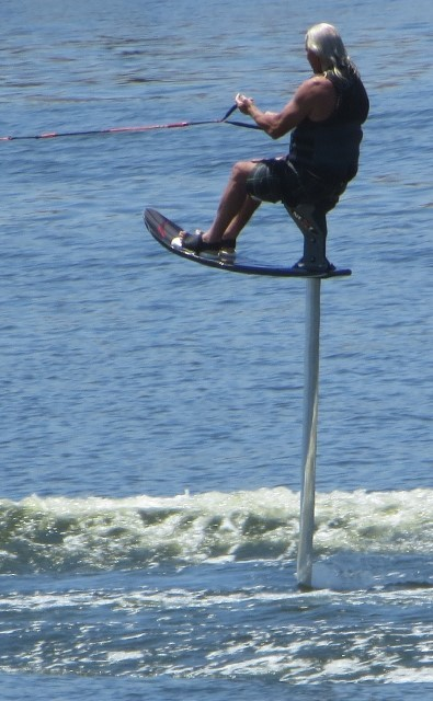 Water skier on a stick