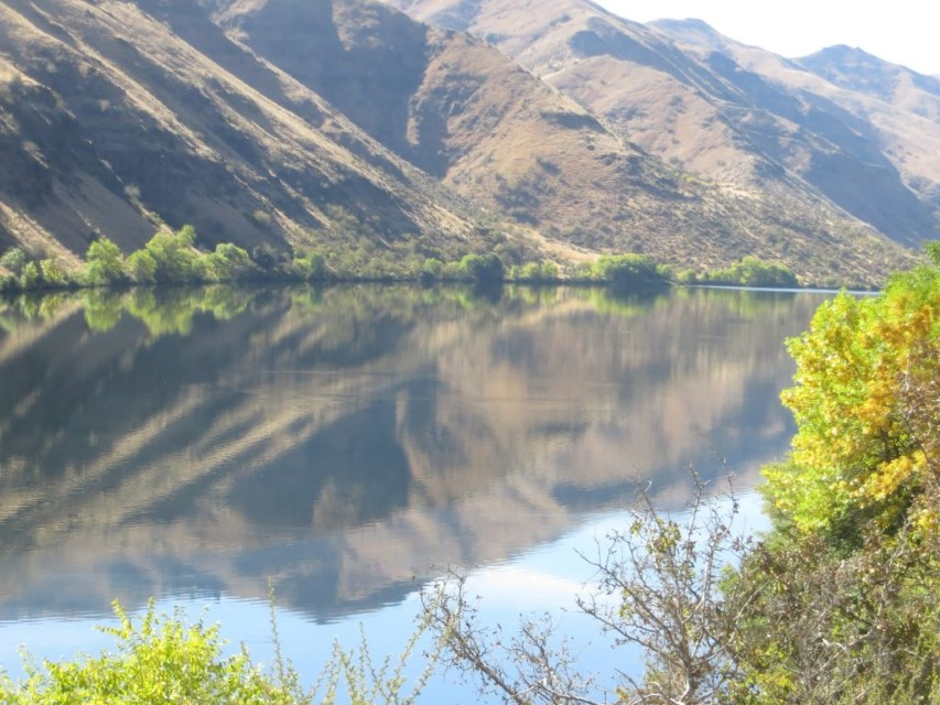 Hells Canyon Brownlee
