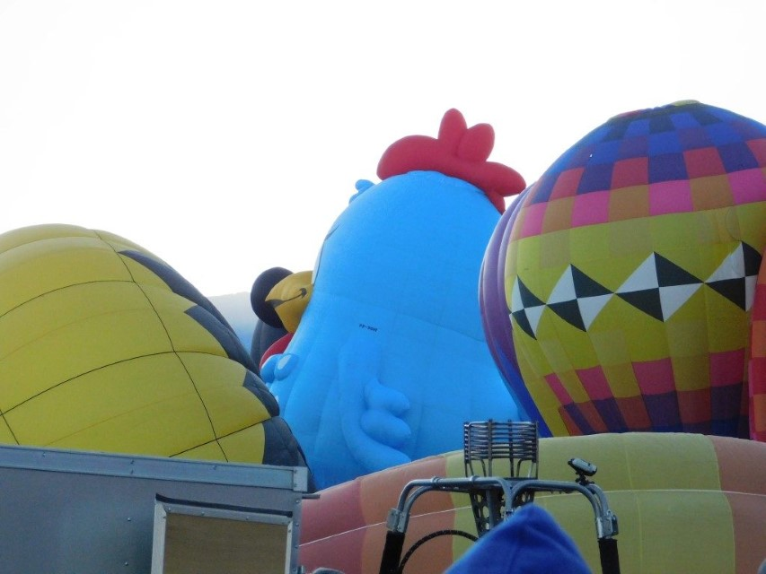 Balloons Hatching everywhere. Unbelievable